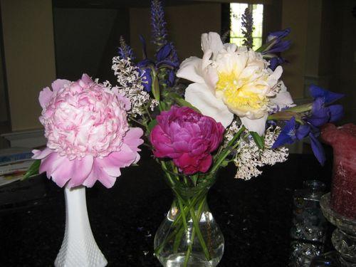 Flowers 2009 012